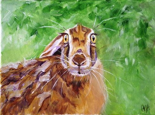 cautious hare small.JPG
