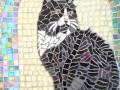 Echo mosaic