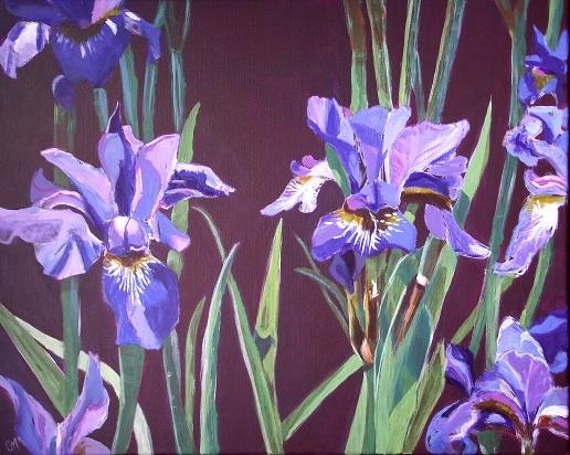 Irises small.JPG