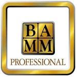BAMMprofessional_logo-150x150